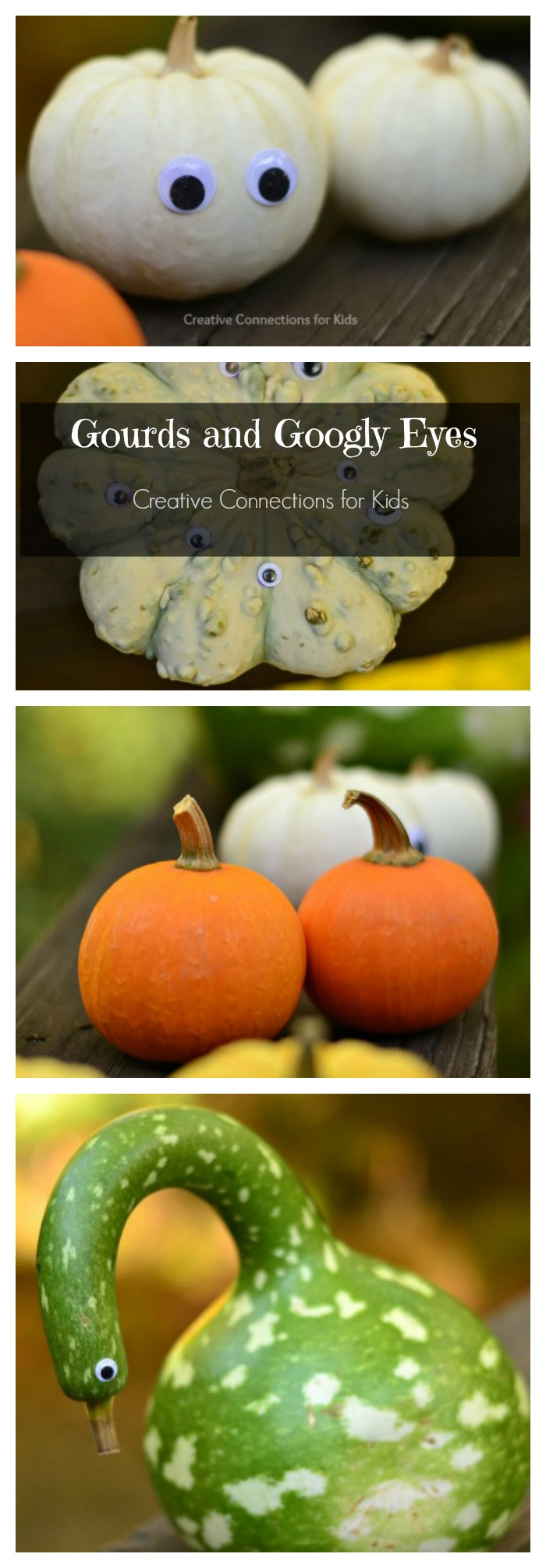 gourds-and-googly-eyes-the-easiest-way-to-decorate-your-gourds-and-mini-pumpkins-for-fall