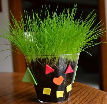 grass-buddy-103-350x342